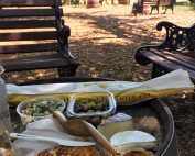 Image of picnic lunch at V Sattui Winery